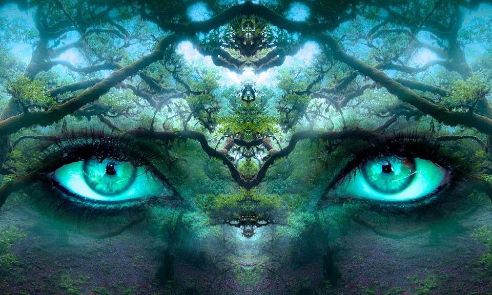 des yeux fou grace aux lentilles de couleurs